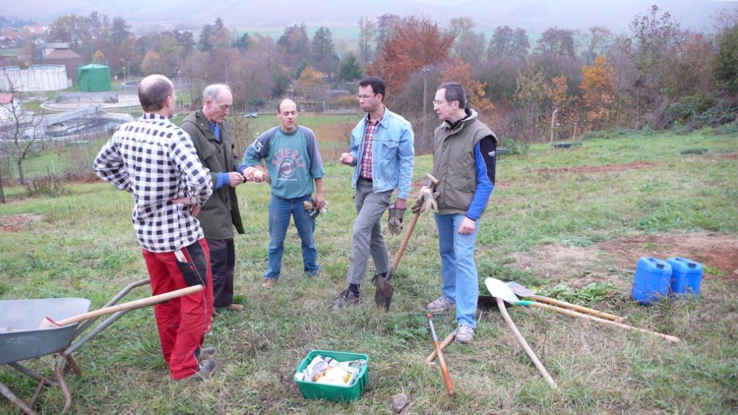C:\Users\Hans\BUND, Naturschutz\Biotoppflege, Fotos\OWC, Arbeitsfoto (5), Apfelprobe.JPG